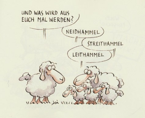 cartoon-lap-neidhammel-560